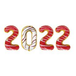 ballongkit 2022 donut